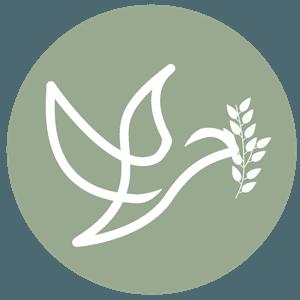 Olive Branch Calvary Chapel