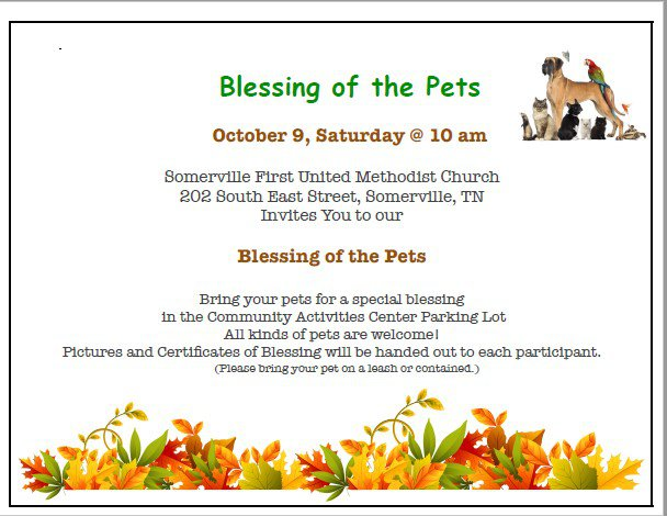 Blessing of the pets