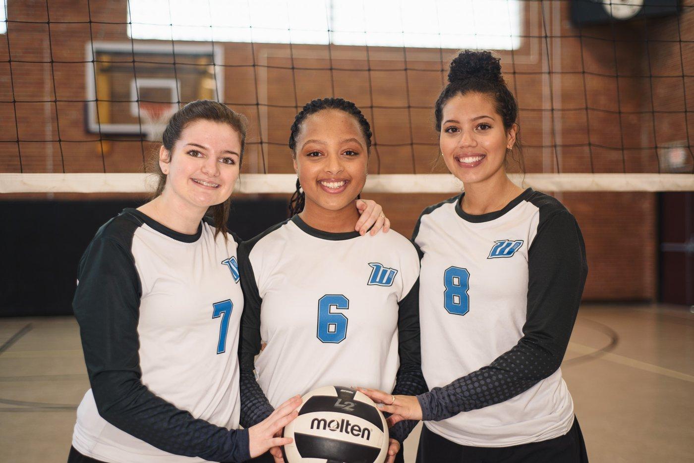 volleyball, somerset warriors